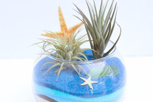 Thêm sao biển, vỏ sò hoặc đá xung quanh
